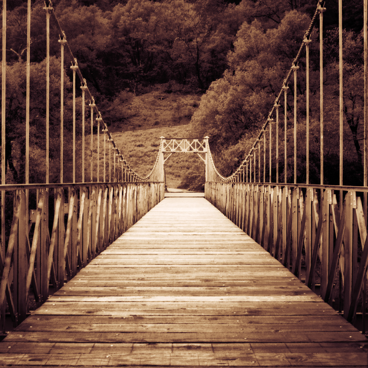 bridge_to_cabin