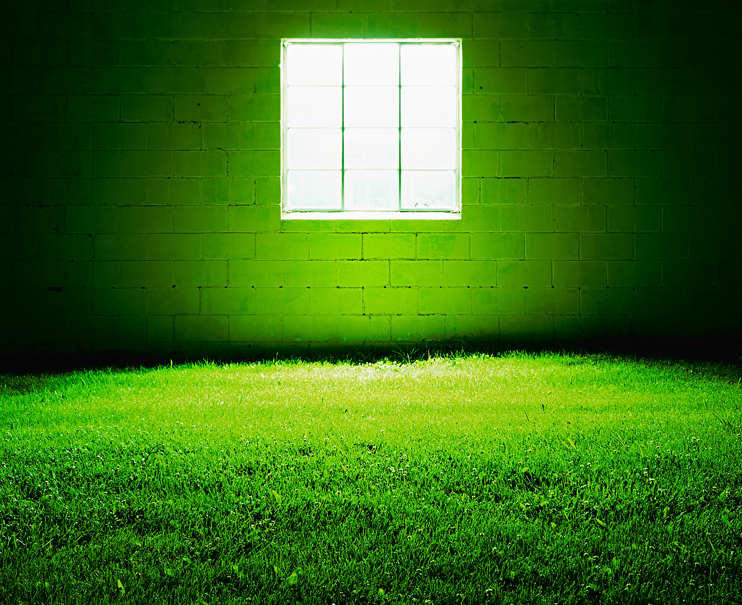 green_grass_room