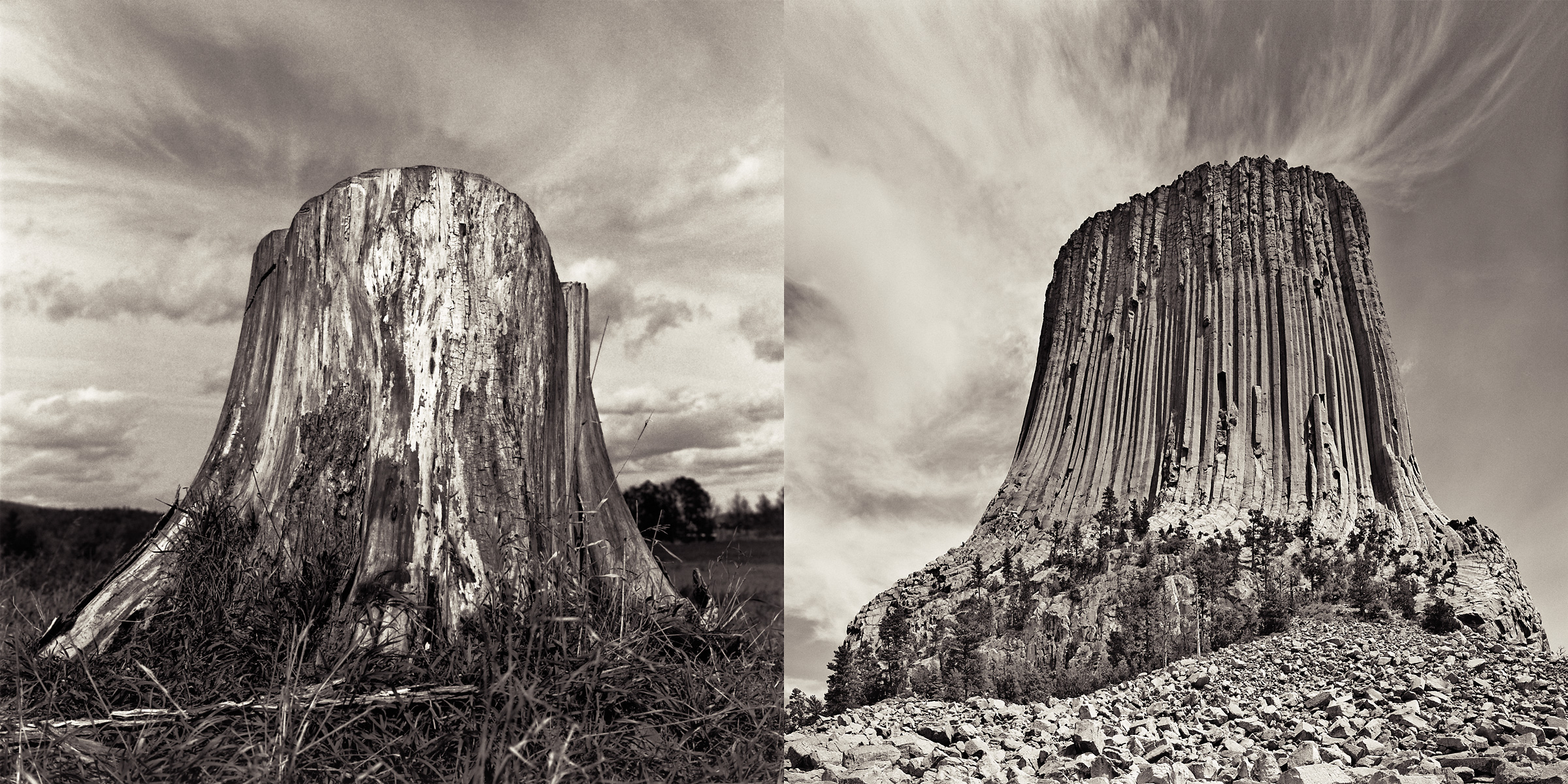 naturescapes-stumpdevils_tower-spread