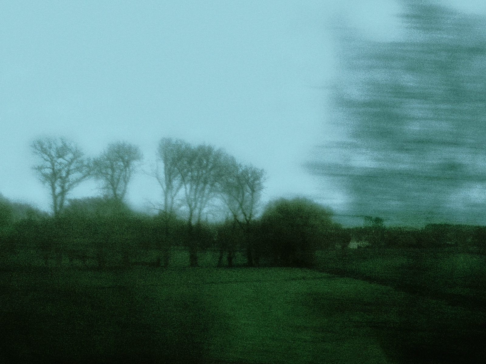 train_moving_field_and_trees